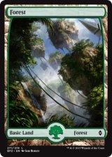 森/Forest No.271 【英語版】 [BFZ-土地]《状態:NM》