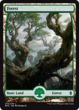 森/Forest No.274 【英語版】 [BFZ-土地]《状態:NM》