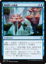 珊瑚兜への撤退/Retreat to Coralhelm 【日本語版】 [BFZ-青U]《状態:NM》
