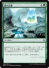 森の占術/Sylvan Scrying 【日本語版】 [BFZ-緑U]《状態:NM》