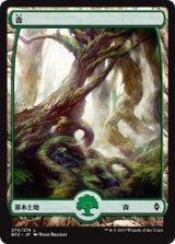 森/Forest No.270 【日本語版】 [BFZ-土地]《状態:NM》