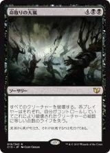 命取りの大嵐/Deadly Tempest 【日本語版】 [C15-黒R]《状態:NM》