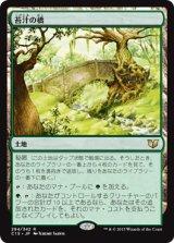 苔汁の橋/Mosswort Bridge 【日本語版】 [C15-茶R]