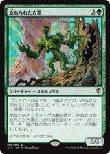 忘れられた古霊/Forgotten Ancient 【日本語版】 [C16-緑R]《状態:NM》