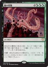 蟲の収穫/Worm Harvest 【日本語版】 [C18-金R]