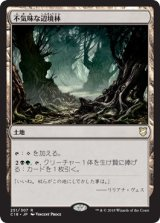 不気味な辺境林/Grim Backwoods 【日本語版】 [C18-土地R]