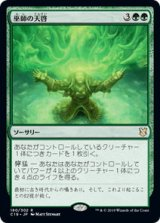 巫師の天啓/Shamanic Revelation 【日本語版】 [C19-緑R]《状態:NM》
