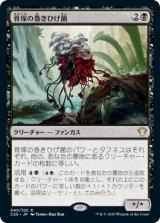 骨塚の巻きひげ菌/Boneyard Mycodrax 【日本語版】 [C20-黒R]《状態:NM》
