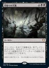 命取りの大嵐/Deadly Tempest 【日本語版】 [C20-黒R]《状態:NM》