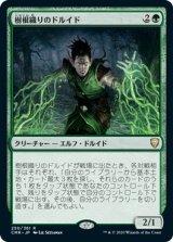 樹根織りのドルイド/Rootweaver Druid 【日本語版】 [CMR-緑R]