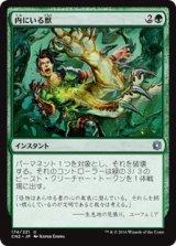 内にいる獣/Beast Within 【日本語版】 [CN2-緑U]《状態:NM》