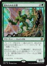忘れられた古霊/Forgotten Ancient 【日本語版】 [CN2-緑R]《状態:NM》