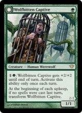 狼に噛まれた囚人/Wolfbitten Captive 【英語版】 [DKA-緑R]《状態:NM》