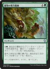 菌類の勢力範囲/Fungal Plots 【日本語版】  [DOM-緑U]《状態:NM》