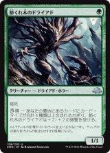 節くれ木のドライアド/Gnarlwood Dryad 【日本語版】 [EMN-緑U]《状態:NM》