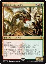 野蛮生まれのハイドラ/Savageborn Hydra 【日本語版】 [GK2-金MR]《状態:NM》