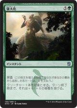 強大化/Become Immense 【日本語版】 [KTK-緑U]《状態:NM》