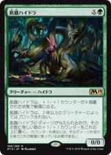 飢餓ハイドラ/Hungering Hydra 【日本語版】 [M19-緑R]《状態:NM》