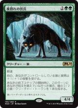 夜群れの伏兵/Nightpack Ambusher 【日本語版】 [M20-緑R]《状態:NM》