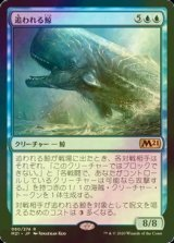 [FOIL] 追われる鯨/Pursued Whale 【日本語版】 [M21-青R]《状態:NM》