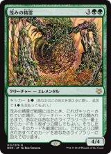 茂みの精霊/Thicket Elemental 【日本語版】 [DDR-緑R]