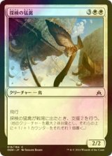 [FOIL] 探検の猛禽/Expedition Raptor 【日本語版】 [OGW-白C]