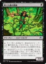 節くれ根の罠師/Gnarlroot Trapper 【日本語版】 [ORI-黒U]《状態:NM》