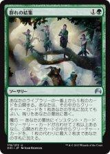 群れの結集/Gather the Pack 【日本語版】 [ORI-緑U]《状態:NM》