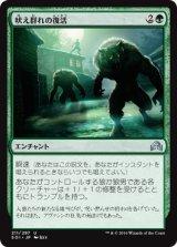 吠え群れの復活/Howlpack Resurgence 【日本語版】 [SOI-緑U]