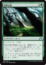 奇妙な森/Weirding Wood 【日本語版】 [SOI-緑U]