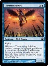 かき鳴らし鳥/Thrummingbird 【英語版】 [SOM-青U]《状態:NM》