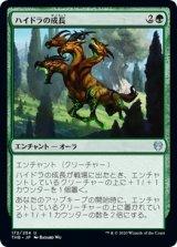 ハイドラの成長/Hydra's Growth 【日本語版】 [THB-緑U]《状態:NM》