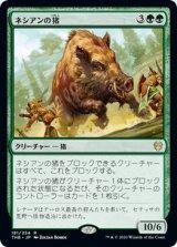ネシアンの猪/Nessian Boar 【日本語版】 [THB-緑R]《状態:NM》