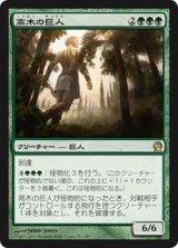 高木の巨人/Arbor Colossus 【日本語版】 [THS-緑R]《状態:NM》