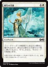 蘇生の天使/Angelic Renewal 【日本語版】 [UMA-白C]