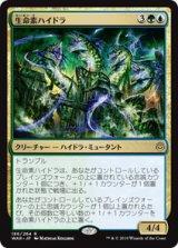 生命素ハイドラ/Bioessence Hydra 【日本語版】  [WAR-金R]《状態:NM》