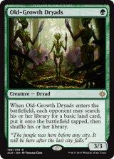 老樹林のドライアド/Old-Growth Dryads 【英語版】 [XLN-緑R]《状態:NM》