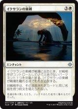 イクサランの束縛/Ixalan's Binding 【日本語版】 [XLN-白U]《状態:NM》