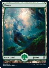 森/Forest No.280 【英語版】 [ZNR-土地C]