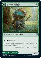 絡みつく花面晶体/Tangled Florahedron 【日本語版】 [ZNR-緑U]